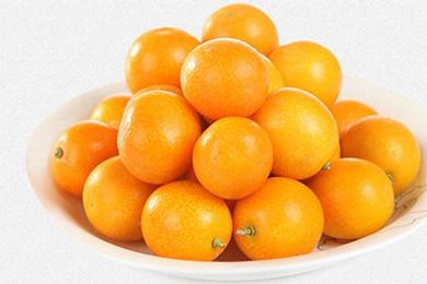 长期咳嗽喝金橘茶 金橘茶治疗咳嗽有奇效