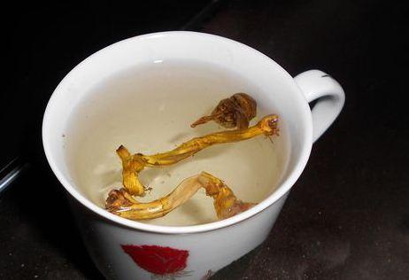 長痘痘清晨一杯鐵皮石斛茶