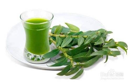 铁皮石斛汁