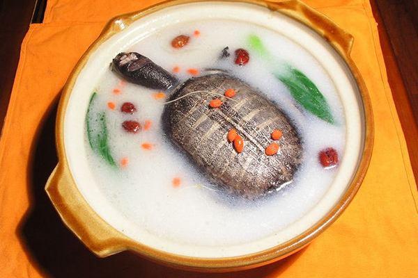 石斛甲魚湯