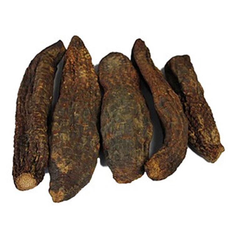补肾的中药材_锁阳和肉苁蓉的区别有哪些_藏红花网