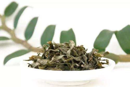 铁皮石斛叶子茶